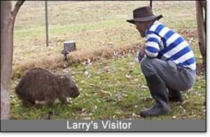 larry&wombat