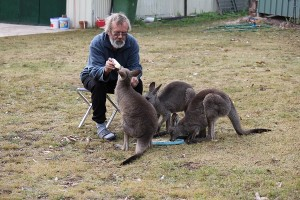 Larry feeding Bucky with Bozo and Bronte