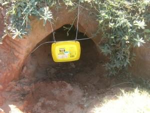 burrow flap for ivomec