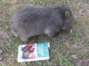 """Fidel's size now .The book is 9"""" long."""